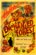 ENCHANTED FOREST, THE (1945) - All Region DVD-R