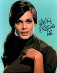 MARTINE BESWICKE (Publicity Photo) - 8X10 Autographed Photo