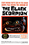 BLACK SCORPION - 11X17 Poster Reproduction